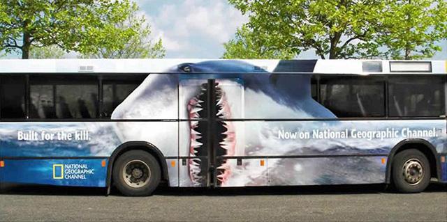 shark bus_2